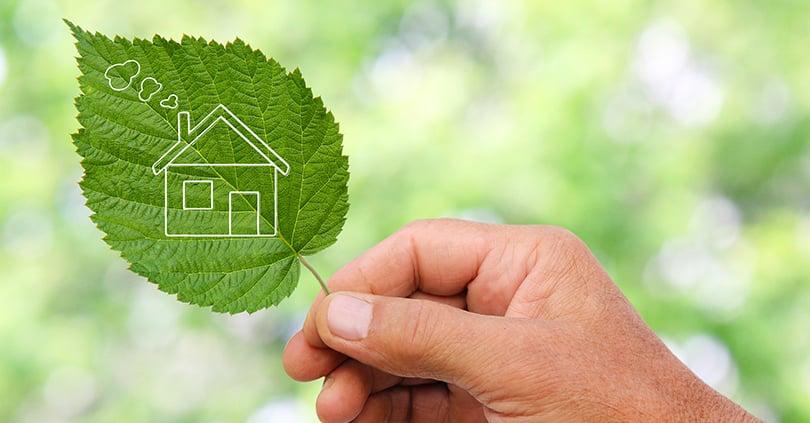 Sostenibilità: le 6 pietre miliari su cui intervenire