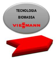 Tecnologia Biomassa-1